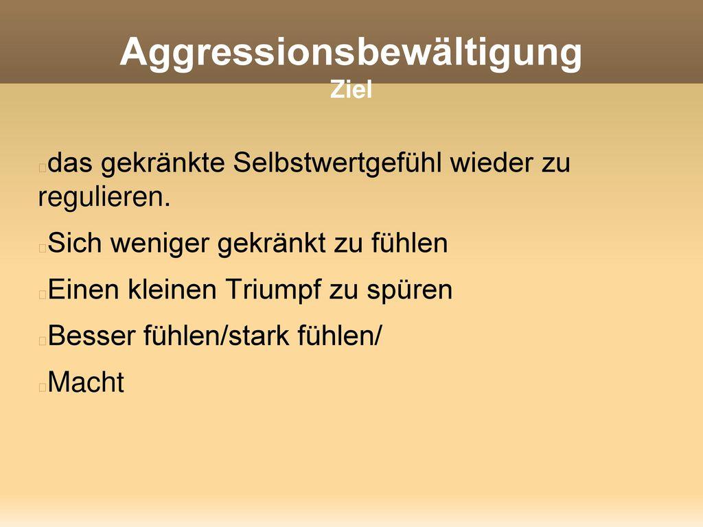 Aggressionsbewältigung Ziel
