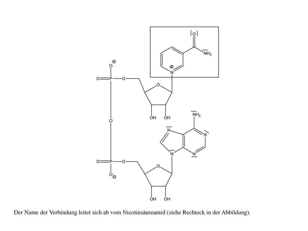 Der Name der Verbindung leitet sich ab vom Nicotinsäureamid (siehe Rechteck in der Abbildung).