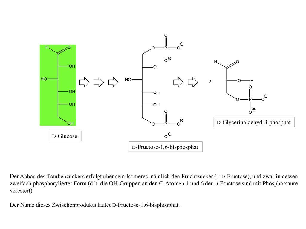 Der Name dieses Zwischenprodukts lautet D-Fructose-1,6-bisphosphat.