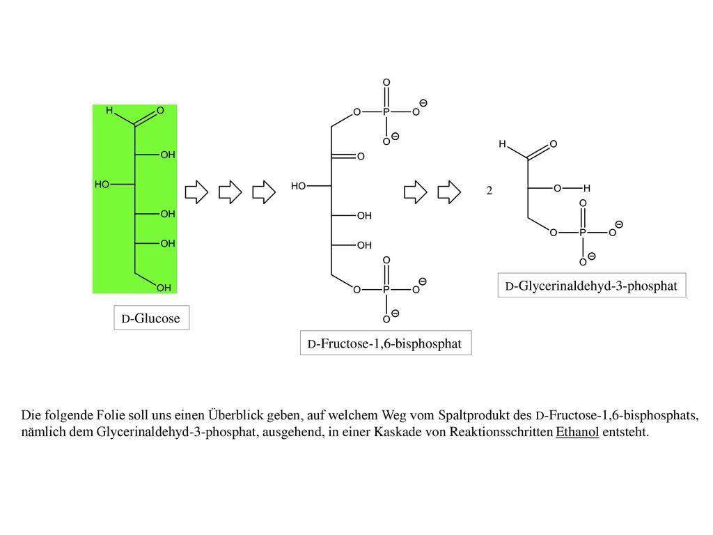 2 D-Glycerinaldehyd-3-phosphat. D-Glucose. D-Fructose-1,6-bisphosphat.