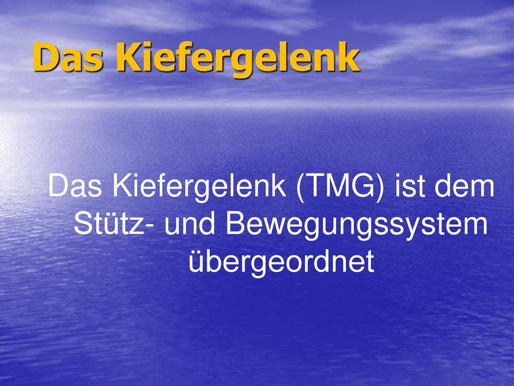 Das Kiefergelenk (TMG) ist dem Stütz- und Bewegungssystem übergeordnet