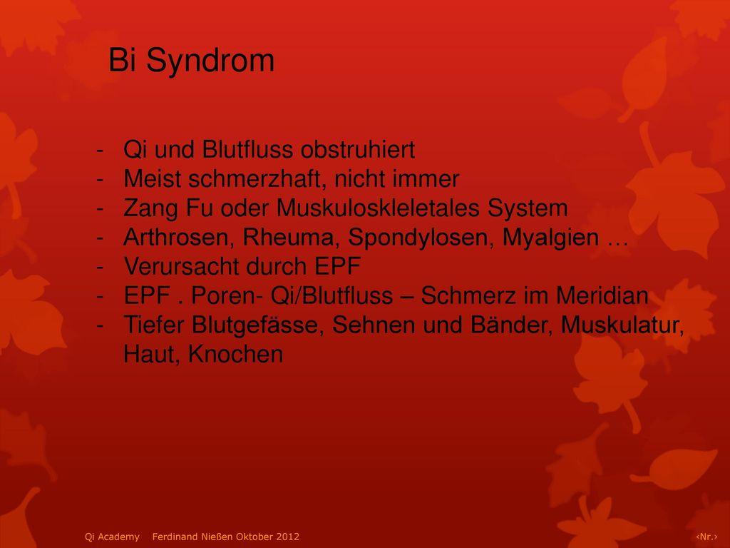 Bi Syndrom Qi und Blutfluss obstruhiert Meist schmerzhaft, nicht immer