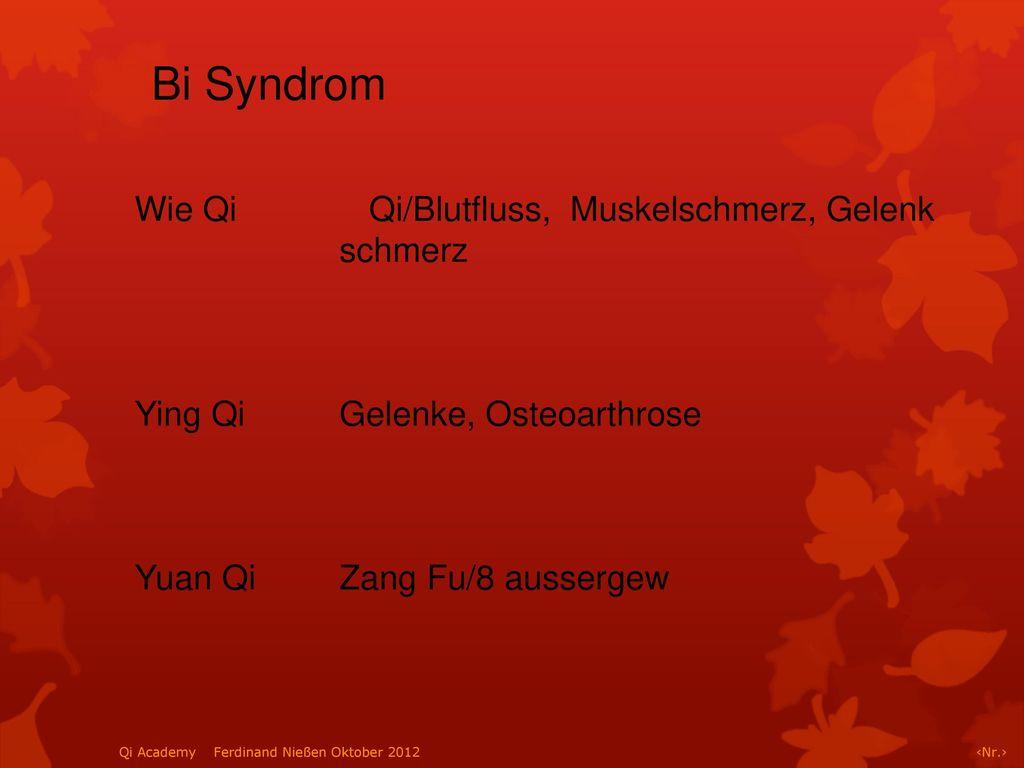 Bi Syndrom Wie Qi Qi/Blutfluss, Muskelschmerz, Gelenk schmerz