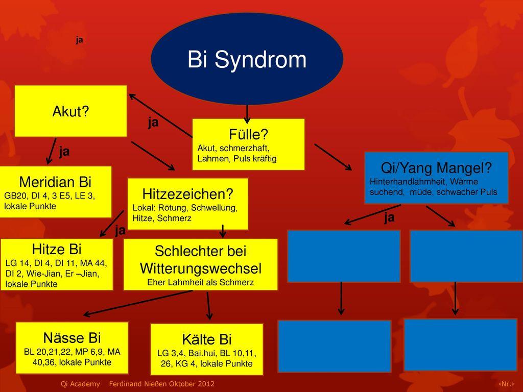 Bi Syndrom Akut Fülle Qi/Yang Mangel Meridian Bi Hitzezeichen