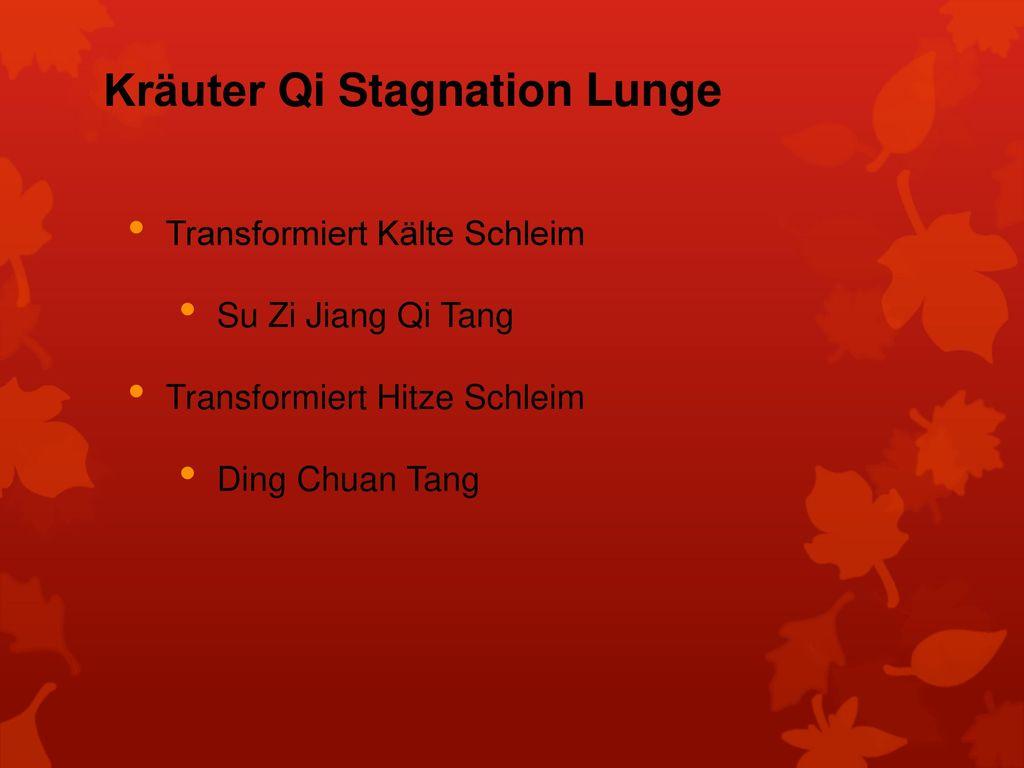 Kräuter Qi Stagnation Lunge