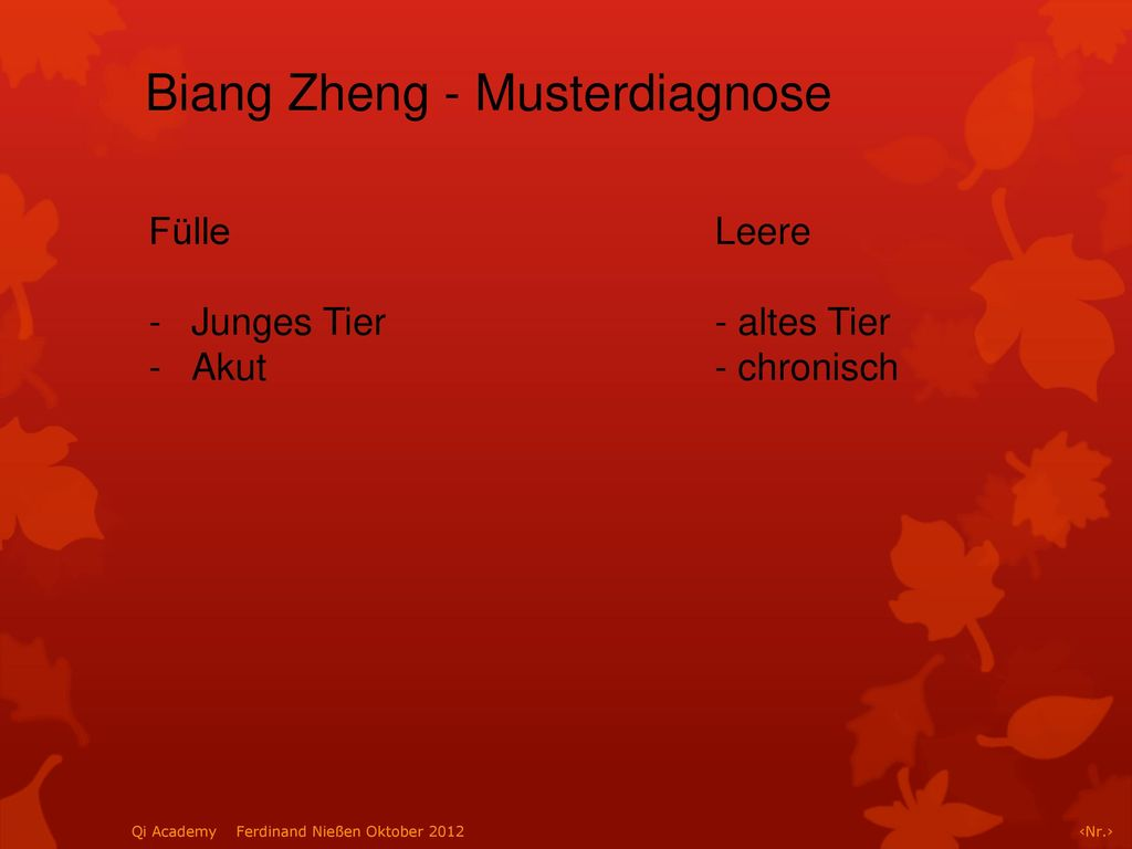 Biang Zheng - Musterdiagnose