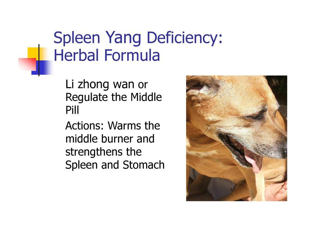 Spleen Yang Deficiency: Herbal Formula