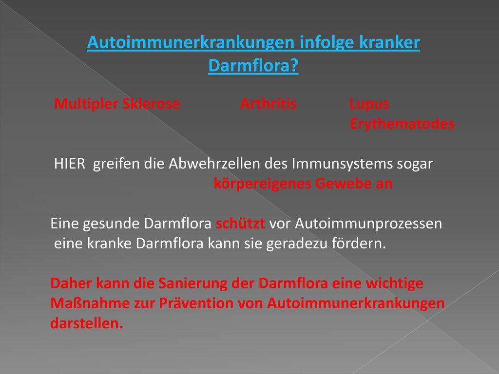 Autoimmunerkrankungen infolge kranker Darmflora