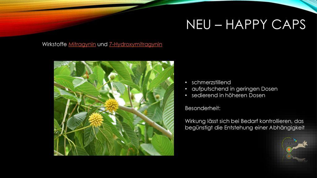 NEU – Happy caps Wirkstoffe Mitragynin und 7-Hydroxymitragynin