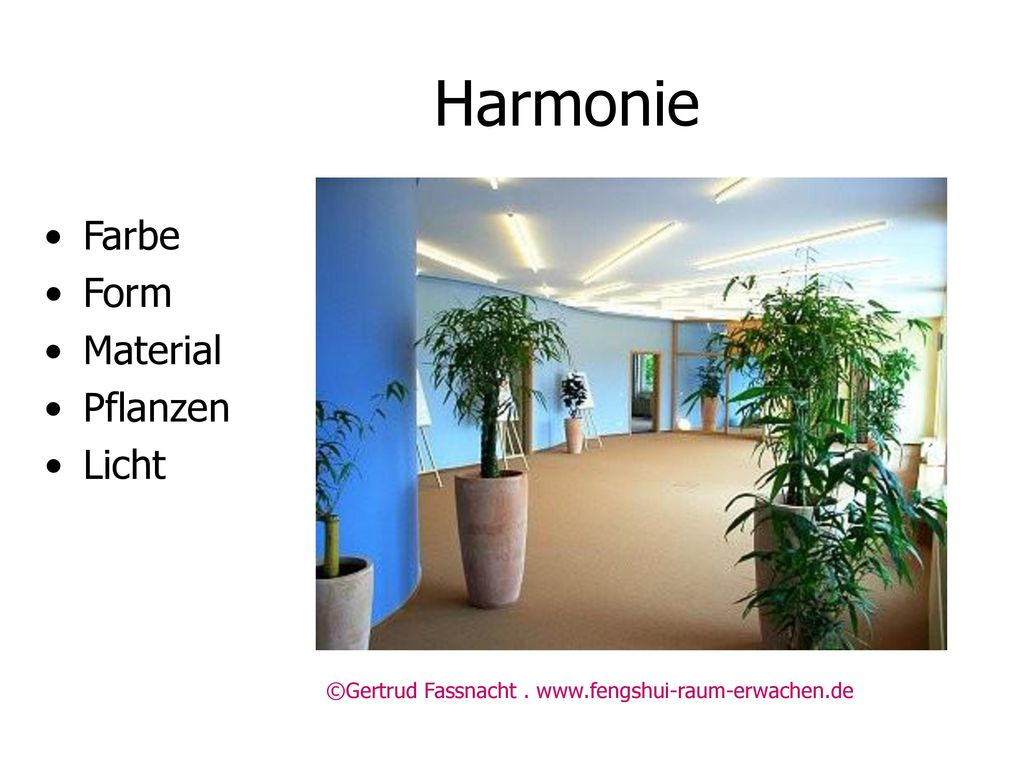 Harmonie Farbe Form Material Pflanzen Licht