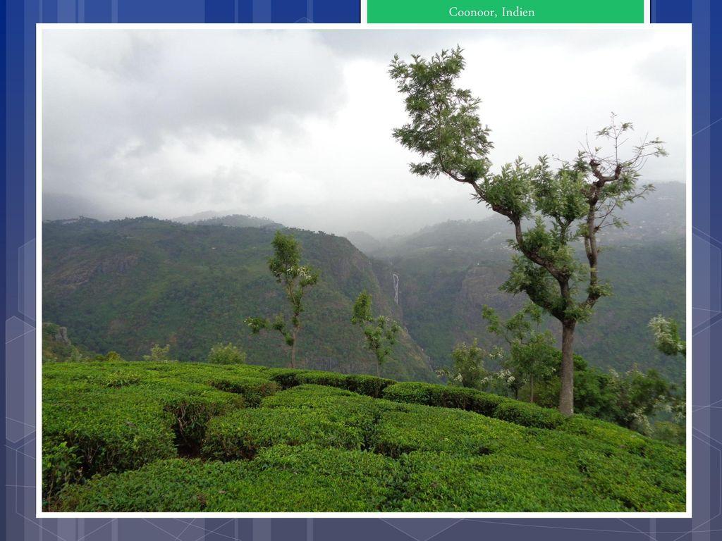 Coonoor, Indien