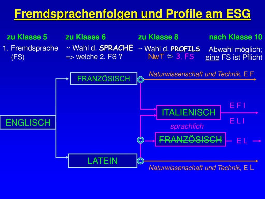 Fremdsprachenfolgen und Profile am ESG