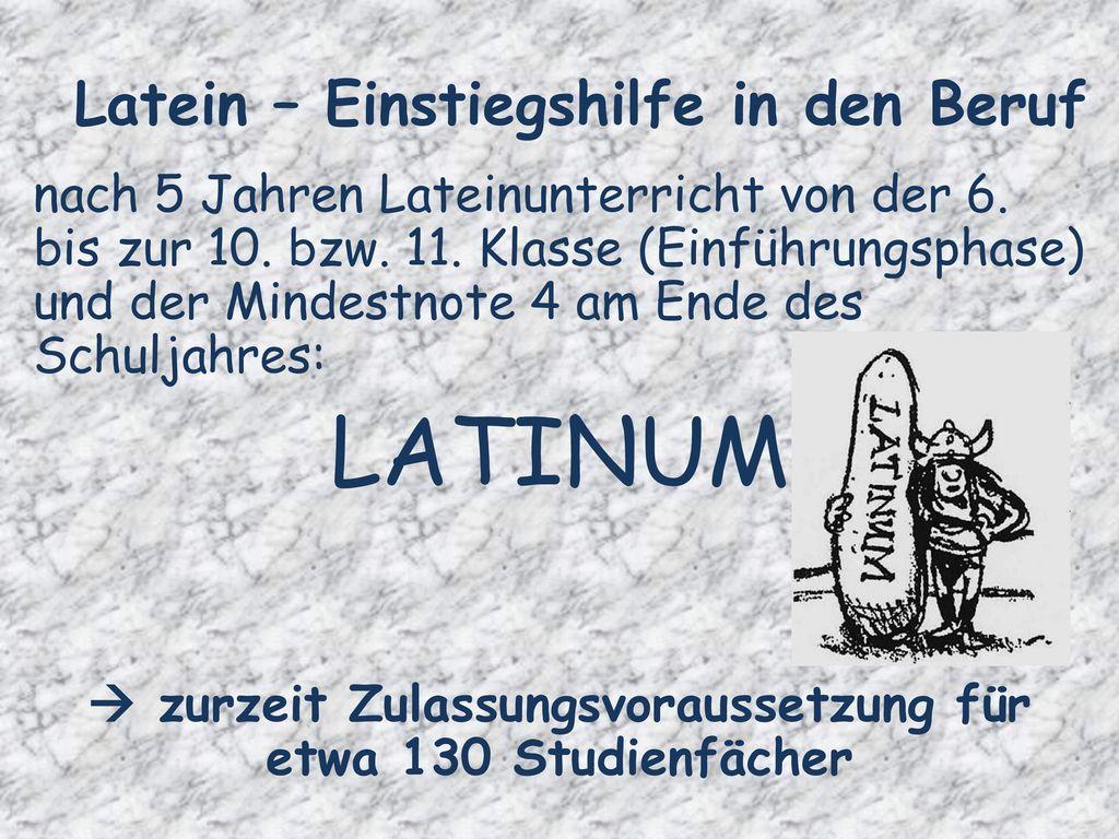 Latein – Einstiegshilfe in den Beruf