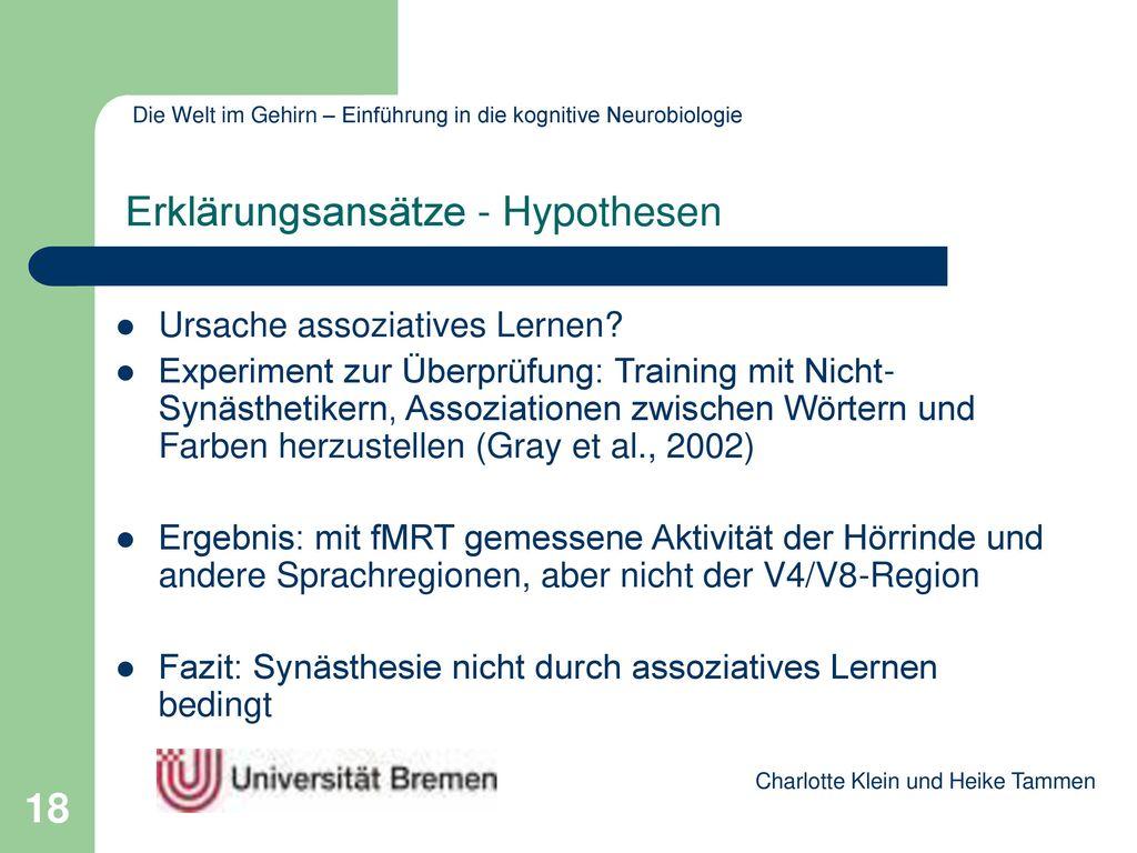 Erklärungsansätze - Hypothesen
