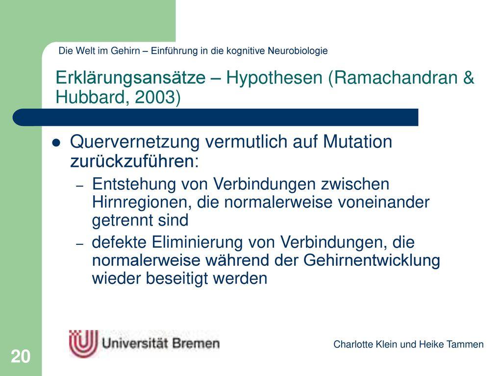 Erklärungsansätze – Hypothesen (Ramachandran & Hubbard, 2003)