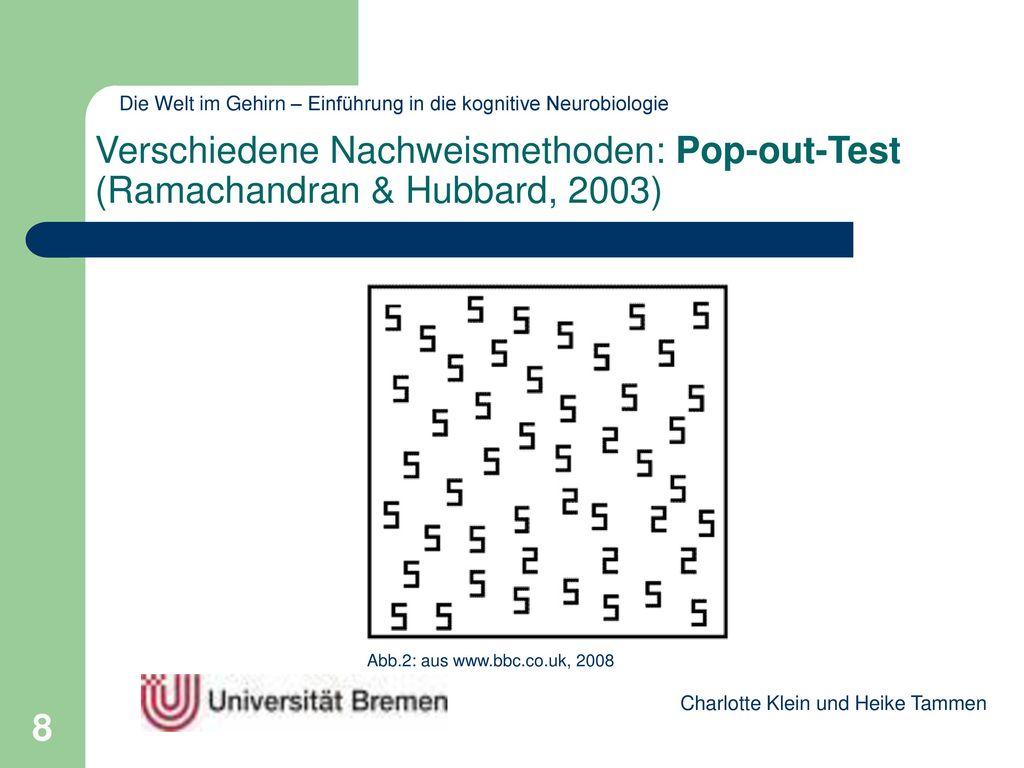 Verschiedene Nachweismethoden: Pop-out-Test (Ramachandran & Hubbard, 2003)