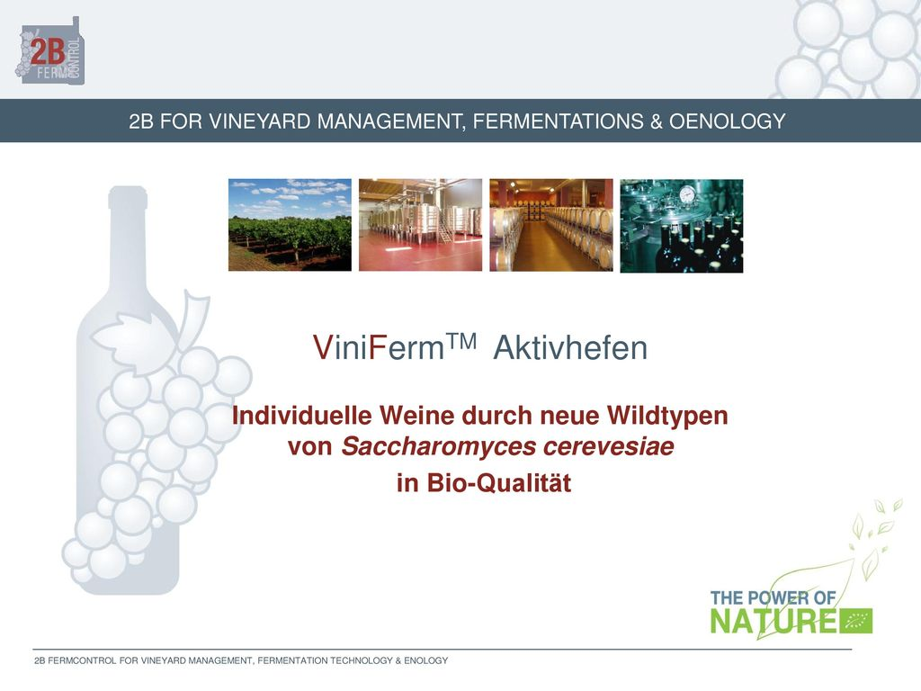 Individuelle Weine durch neue Wildtypen von Saccharomyces cerevesiae