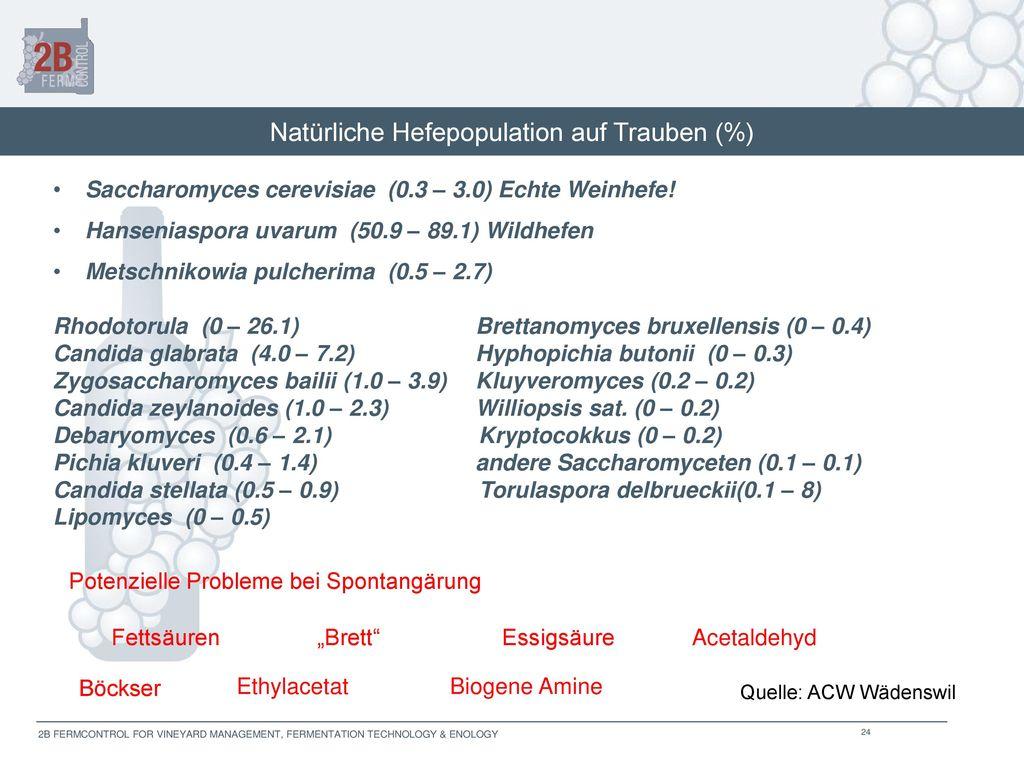 Natürliche Hefepopulation auf Trauben (%)