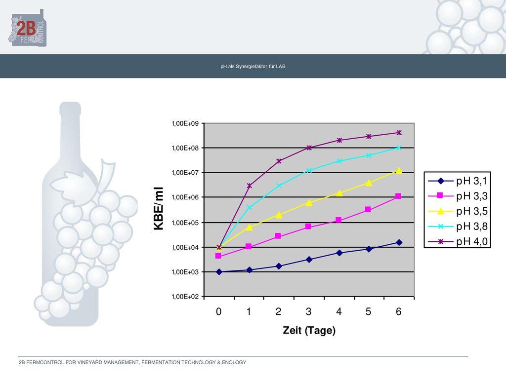 pH als Synergiefaktor für LAB