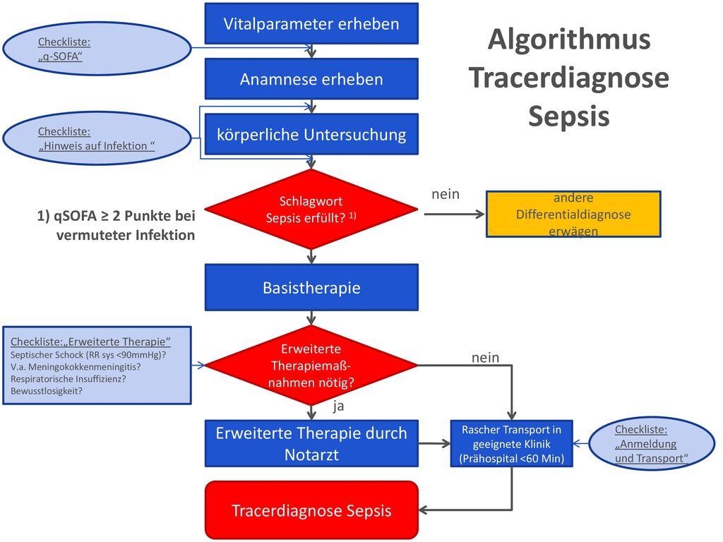 Algorithmus Tracerdiagnose Sepsis
