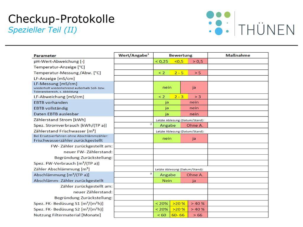 Checkup-Protokolle Spezieller Teil (II)