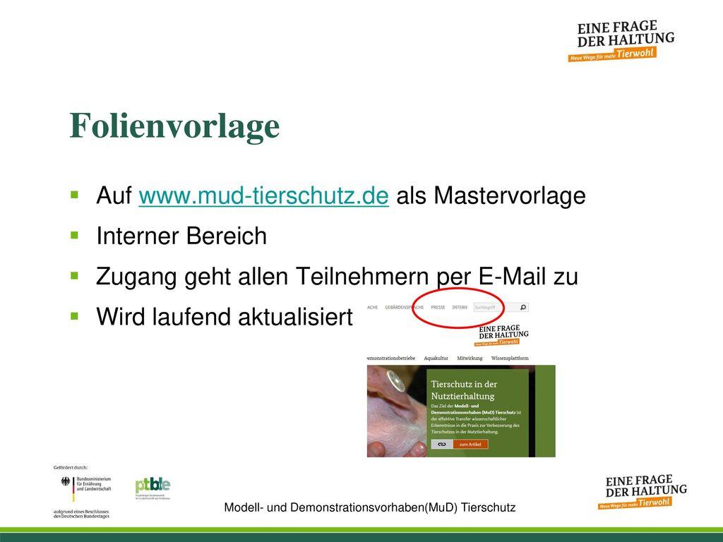 Folienvorlage Auf www.mud-tierschutz.de als Mastervorlage