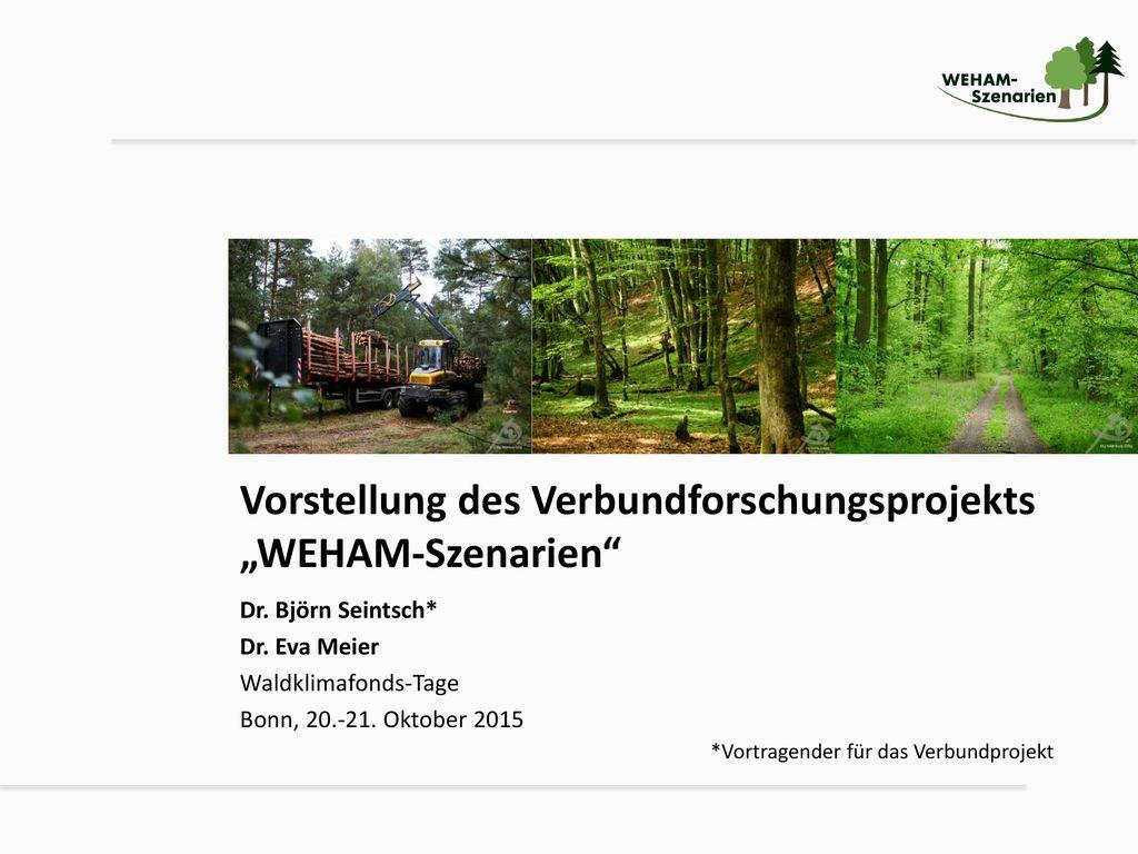 """Vorstellung des Verbundforschungsprojekts """"WEHAM-Szenarien"""