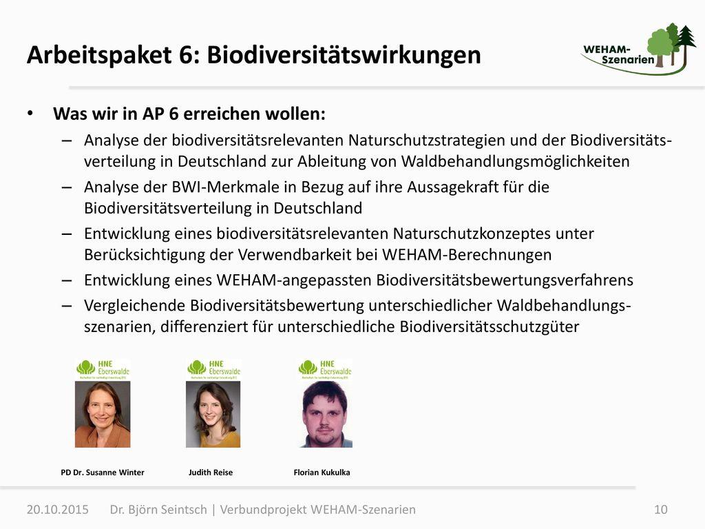 Arbeitspaket 6: Biodiversitätswirkungen