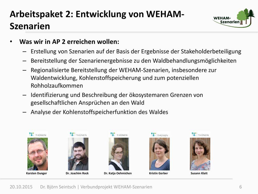 Arbeitspaket 2: Entwicklung von WEHAM-Szenarien