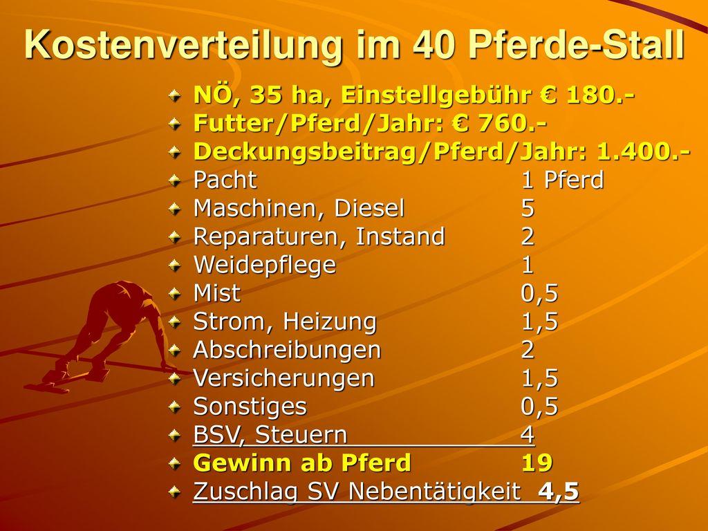 Kostenverteilung im 40 Pferde-Stall