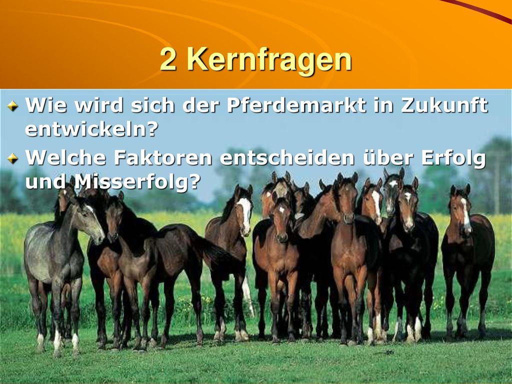 2 Kernfragen Wie wird sich der Pferdemarkt in Zukunft entwickeln