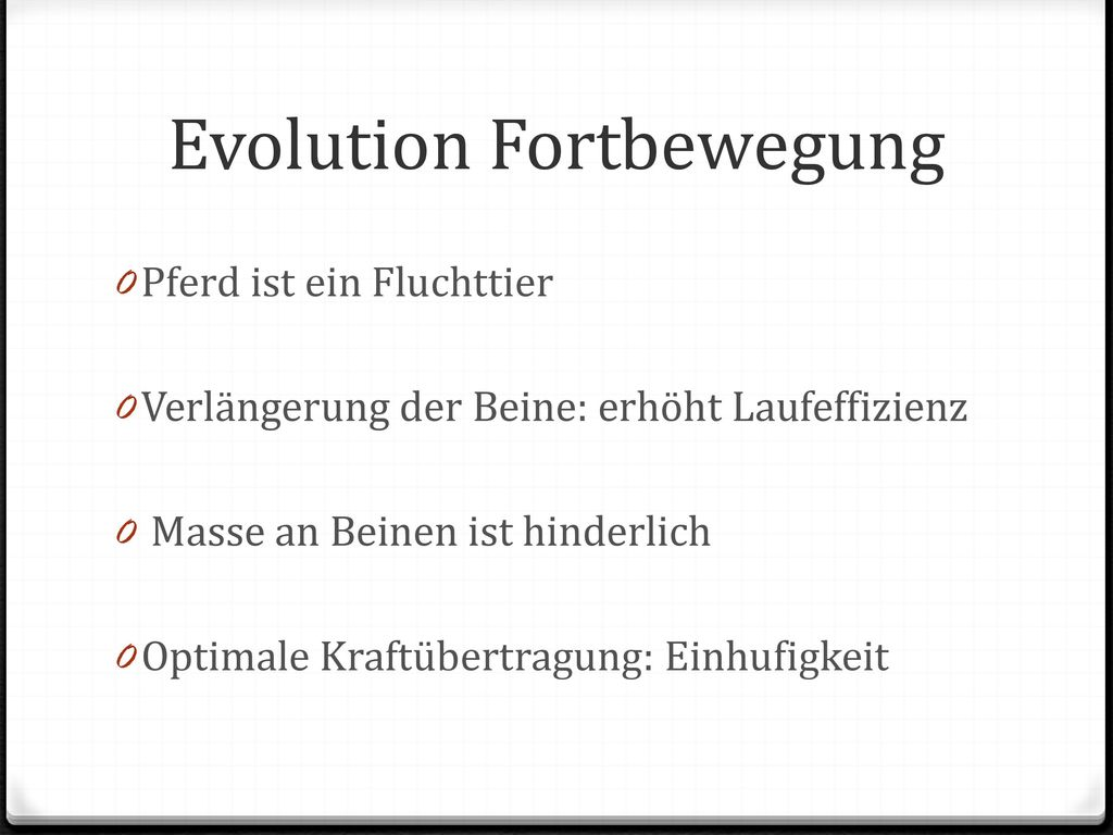 Evolution Fortbewegung
