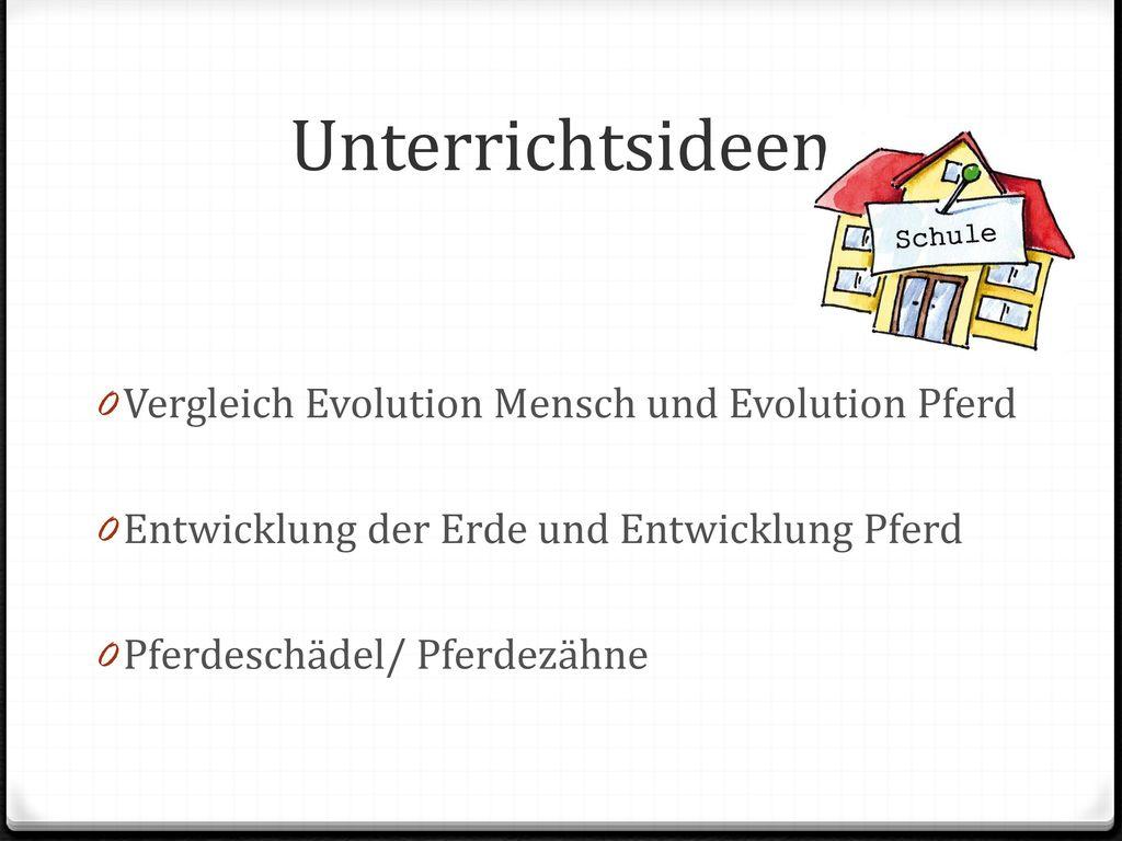Unterrichtsideen Vergleich Evolution Mensch und Evolution Pferd