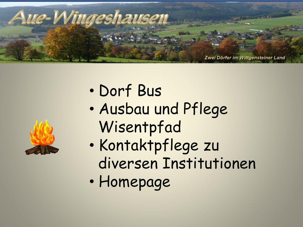 Dorf Bus Ausbau und Pflege Wisentpfad Kontaktpflege zu diversen Institutionen Homepage