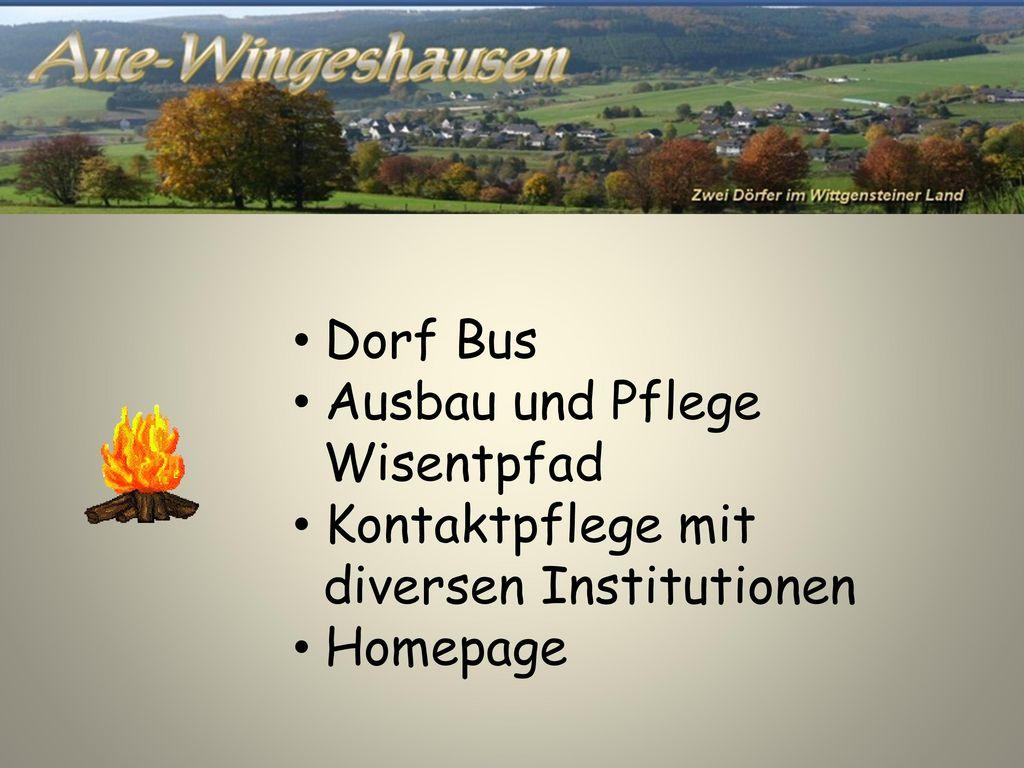Dorf Bus Ausbau und Pflege Wisentpfad Kontaktpflege mit diversen Institutionen Homepage