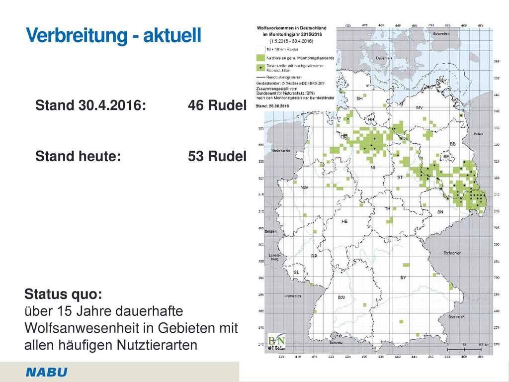 Verbreitung - aktuell Stand : 46 Rudel Stand heute: 53 Rudel