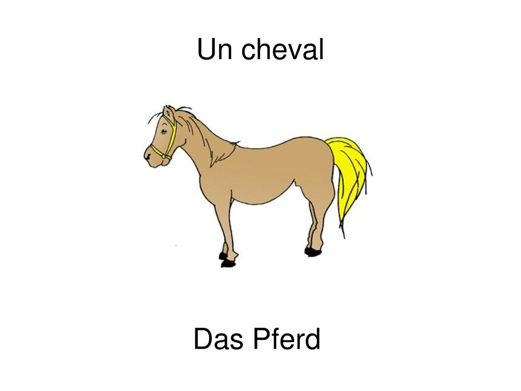 Un cheval Das Pferd