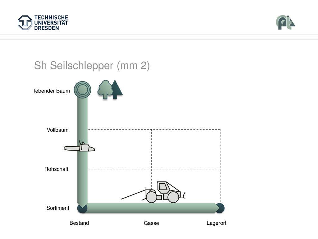 Sh Seilschlepper (mm 2) Vollbaum Rohschaft Sortiment Bestand Lagerort