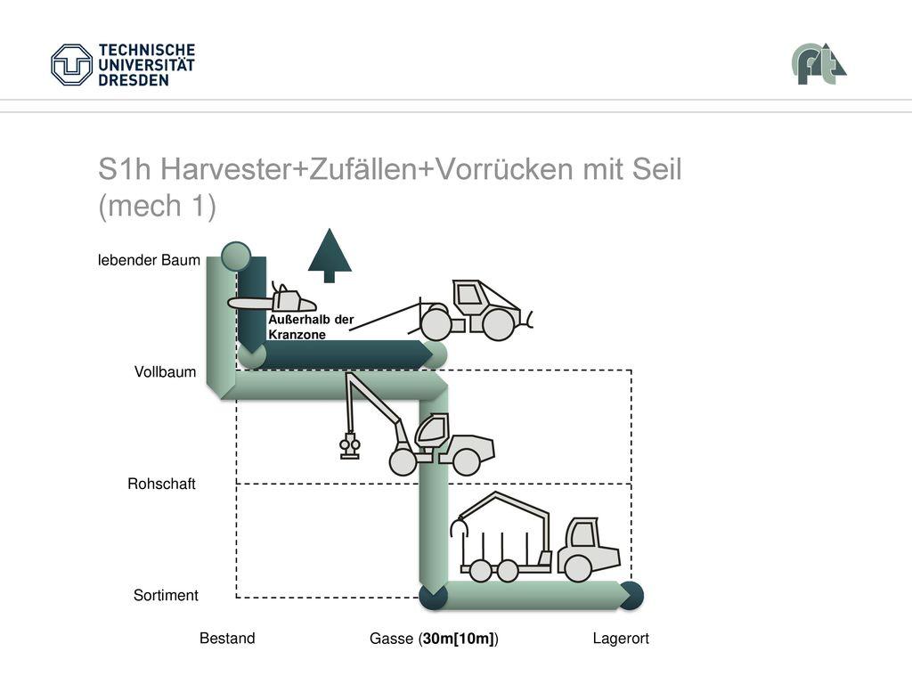 S1h Harvester+Zufällen+Vorrücken mit Seil (mech 1)