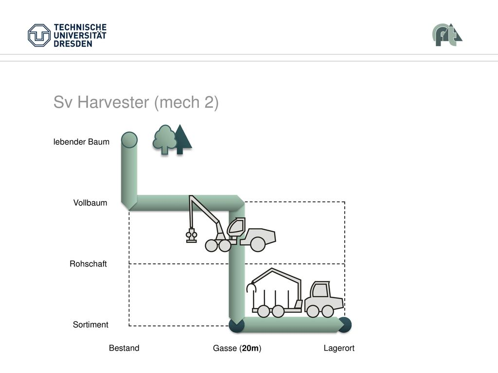 Sv Harvester (mech 2) Vollbaum Rohschaft Sortiment Bestand Lagerort