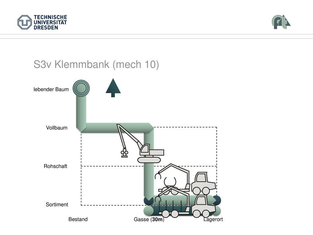 S3v Klemmbank (mech 10) Vollbaum Rohschaft Sortiment Bestand Lagerort