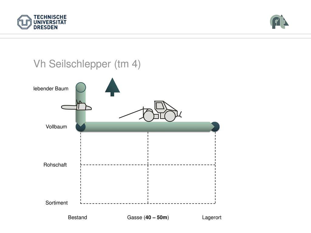 Vh Seilschlepper (tm 4) Vollbaum Rohschaft Sortiment Bestand