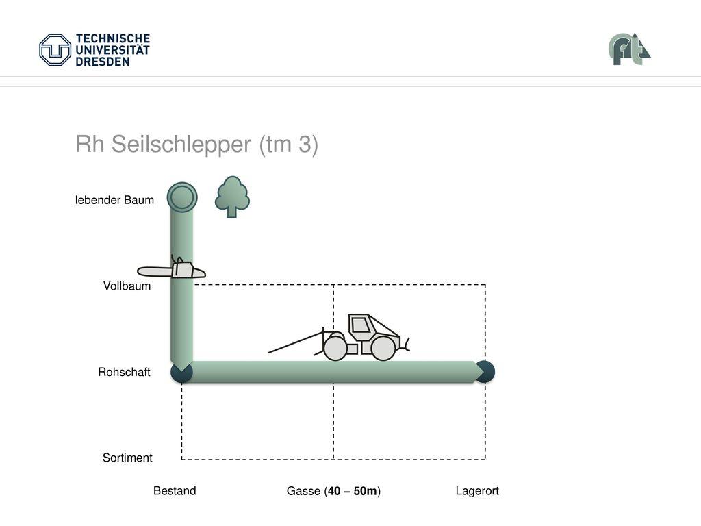 Rh Seilschlepper (tm 3) Vollbaum Rohschaft Sortiment Bestand Lagerort