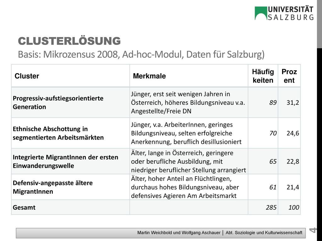 Clusterlösung Basis: Mikrozensus 2008, Ad-hoc-Modul, Daten für Salzburg)