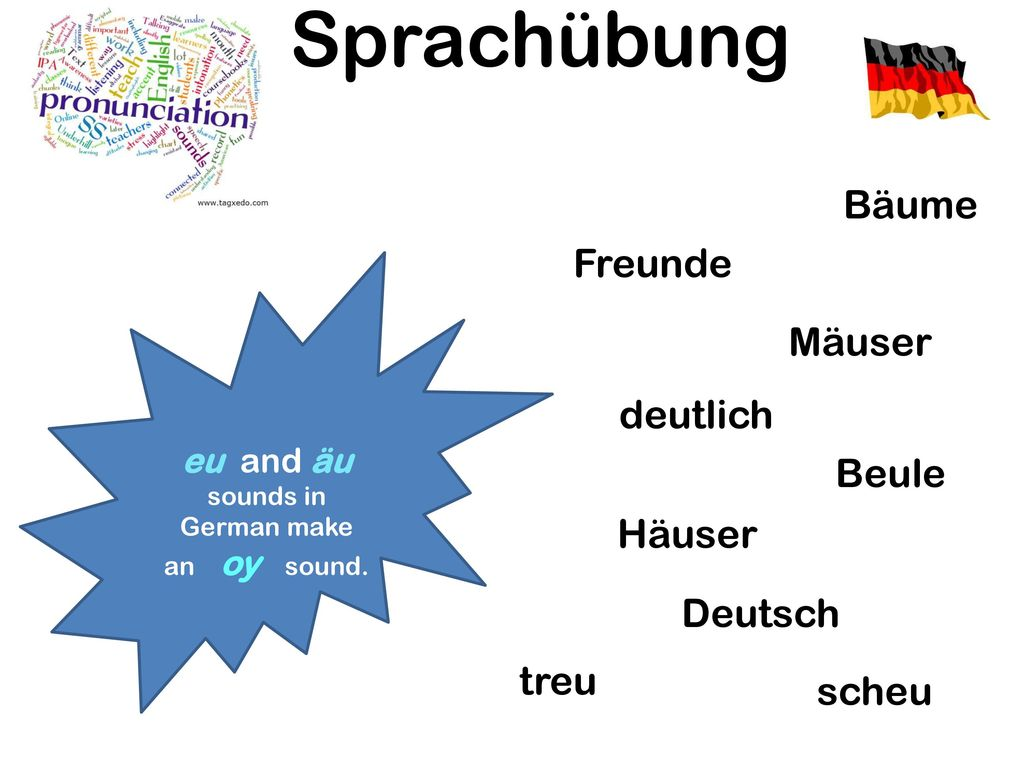 eu and äu sounds in German make an oy sound.
