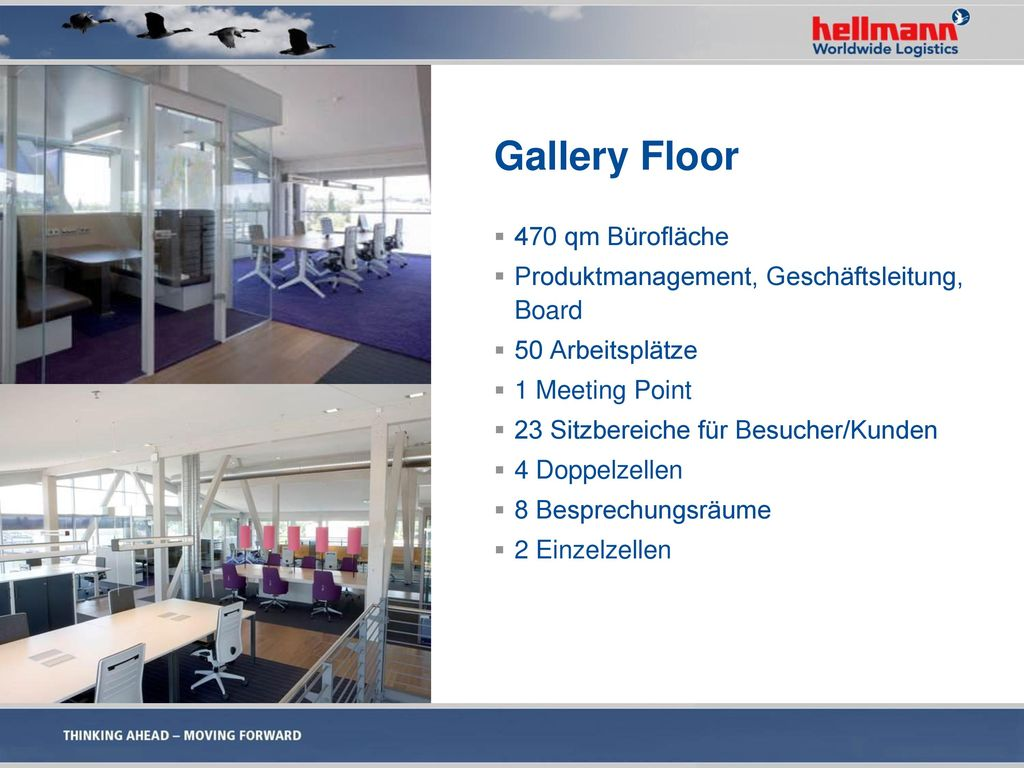Gallery Floor 470 qm Bürofläche
