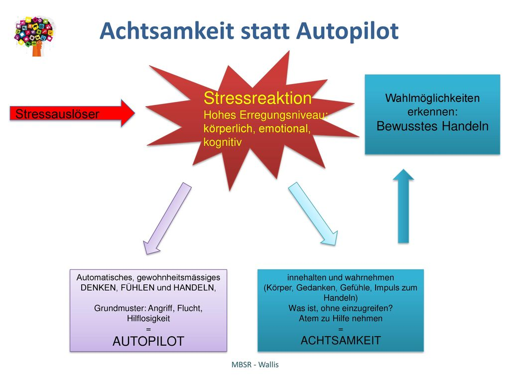 Achtsamkeit statt Autopilot