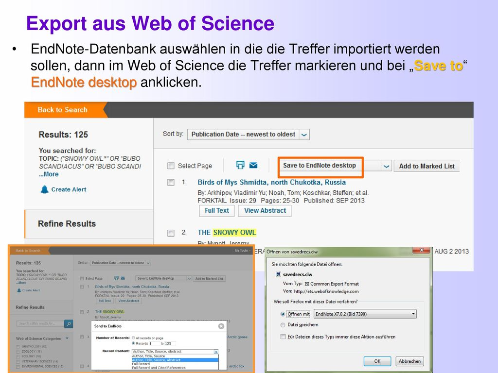Export aus Web of Science