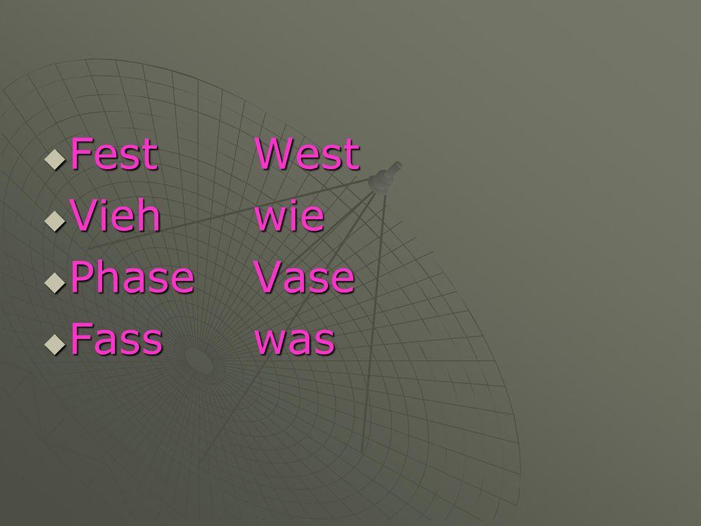 Fest West Vieh wie Phase Vase Fass was