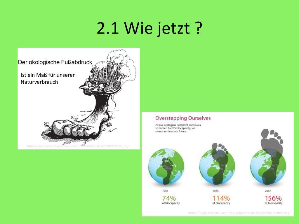 2.1 Wie jetzt Der ökologische Fußabdruck